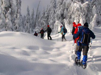 Snowshoes Tours