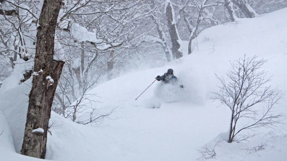 Backcountry Hakuba
