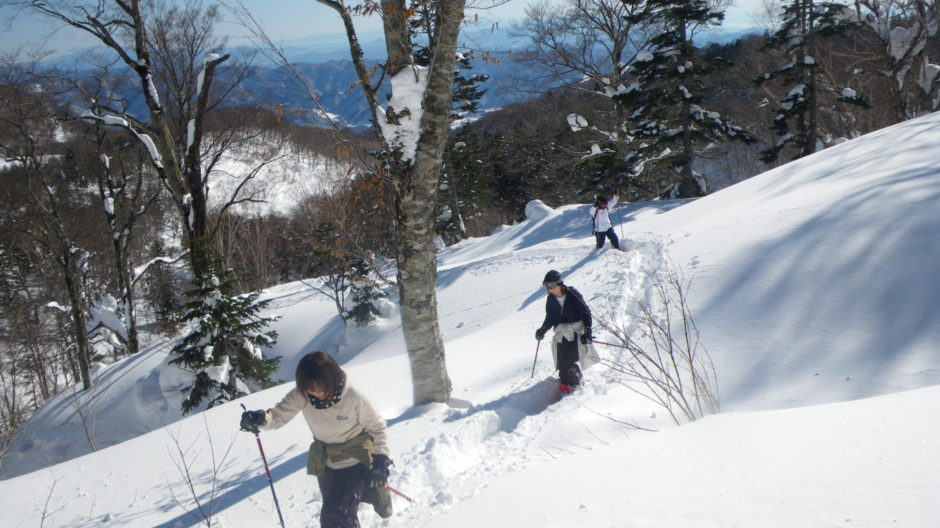 Backcountry in Hakuba